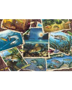 Cobble Hill Puzzle Co-1000-Fish Pics